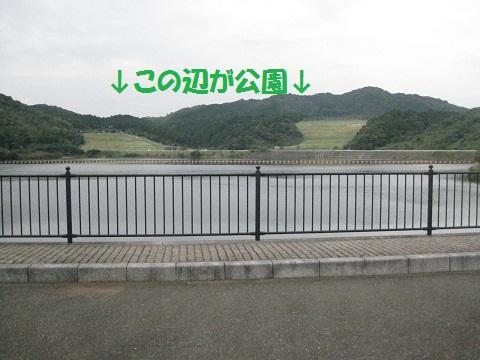 099_20111109105631.jpg