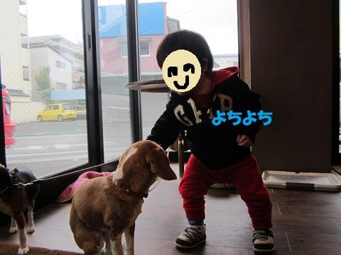 102_20120218072711.jpg
