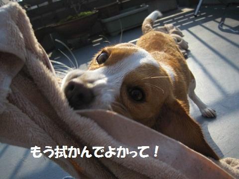 133_20111019105801.jpg