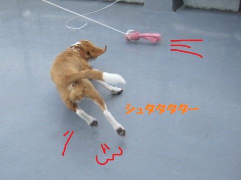 143_20111022180742.jpg