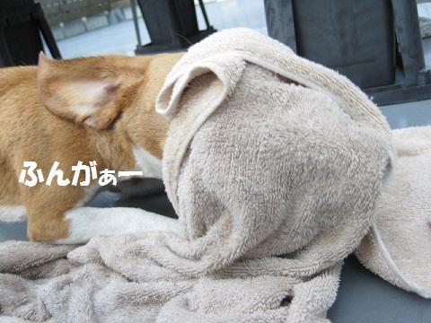 154_20111019105803.jpg