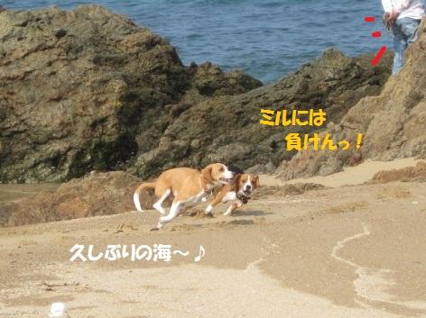172_20111010085616.jpg