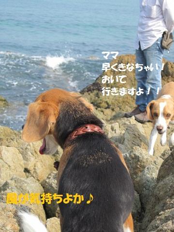 192_20111011074228.jpg