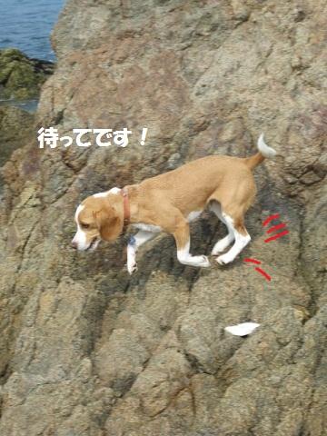 212_20111011080747.jpg