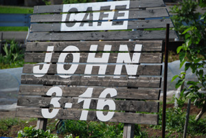 JOHN3-16 1
