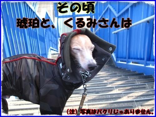 1_20120111021126.jpg