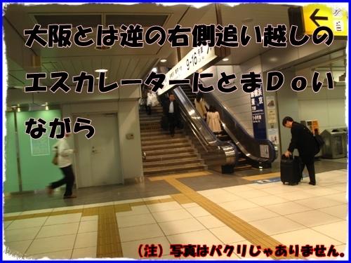 3_20120111021125.jpg