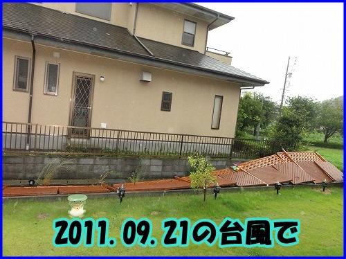 DSC00013_20120206023804.jpg