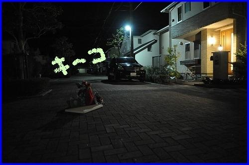DSC_0747_20111222232620.jpg