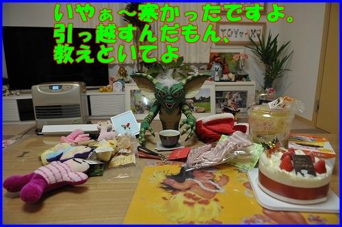 DSC_0786_20111222232842.jpg