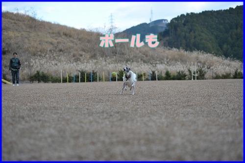 DSC_1026_20111226024839.jpg