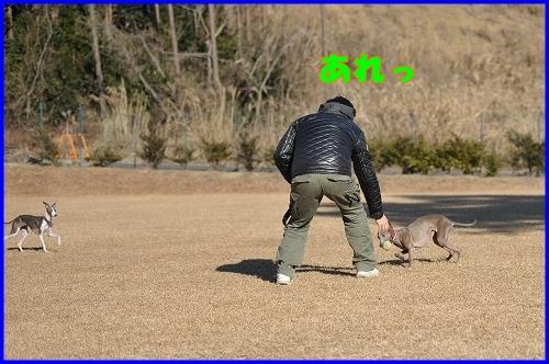 DSC_1276_20120110230341.jpg