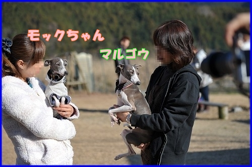 DSC_1292_20120112230504.jpg