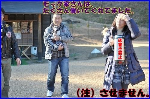 DSC_1300_20120112230504.jpg