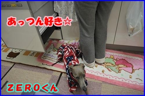 DSC_1679_20120126005527.jpg