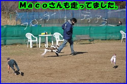 DSC_2072_20120214235427.jpg