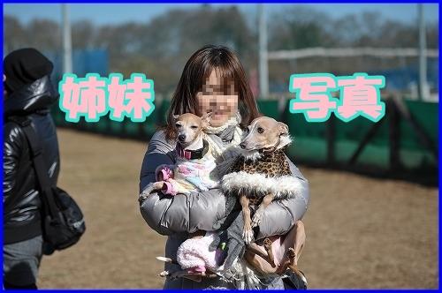 DSC_2092_20120214235511.jpg