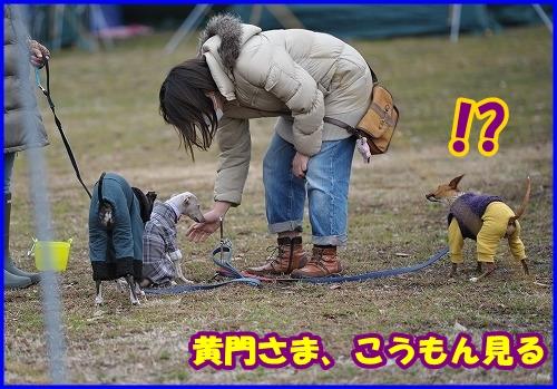 DSC_2469_20120229000044.jpg