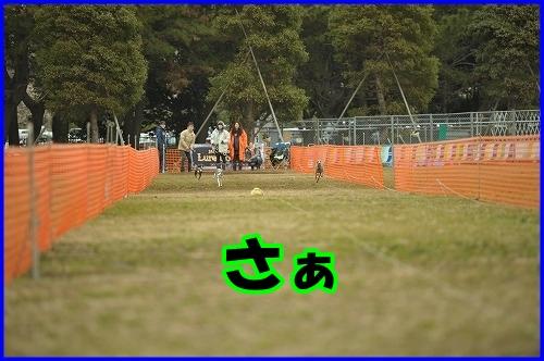 DSC_2620.jpg