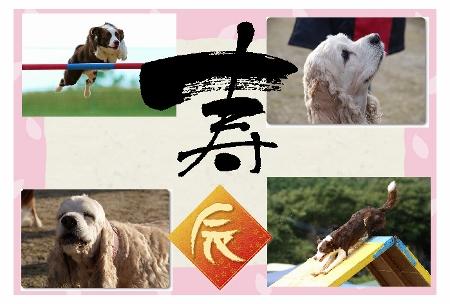 2012明子2 (450x304)