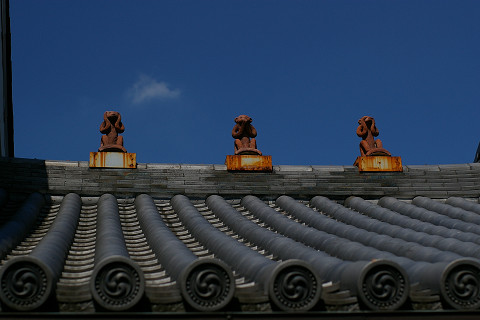 屋根の上に