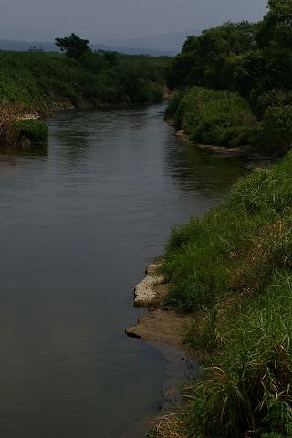 木津川の本流
