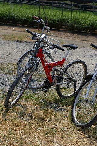 自転車少年隊