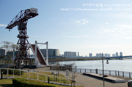 11 7-1 2011