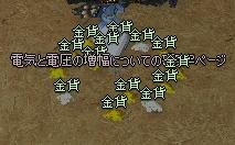 mabinogi_2011_09_30_002-crop.jpg