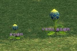 mabinogi_2011_10_03_019-crop.jpg