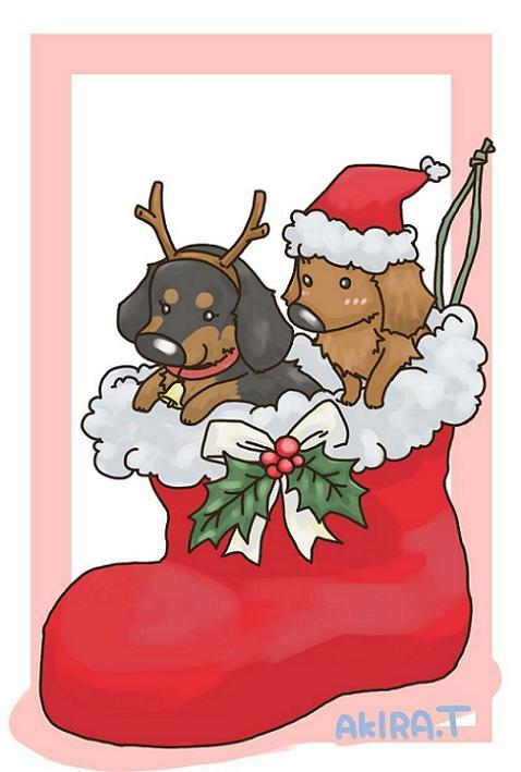 o0800118811619185224_ウィル君とチョコちゃんのクリスマスバージョンa