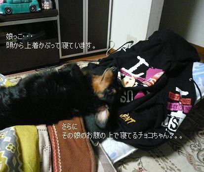 P1360095_娘とチョコちゃん