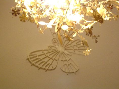 y-butterfly.jpg