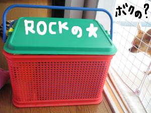 ROCKの