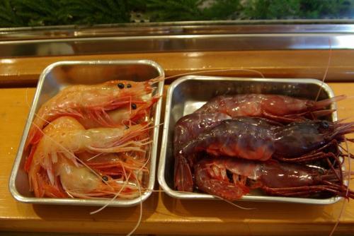 IMGP0039-1216-sushi.jpg