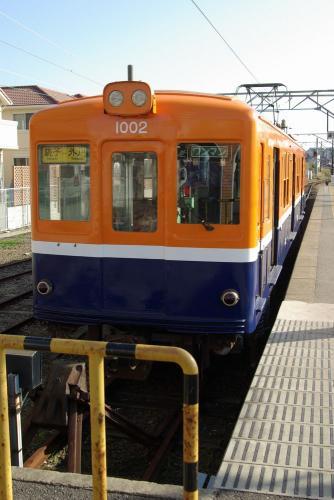 IMGP0071-1230-c.jpg