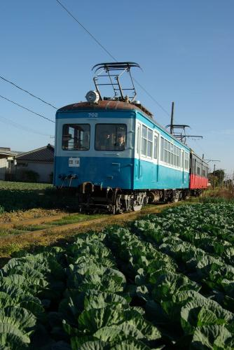 IMGP0077-1209-kyabe.jpg