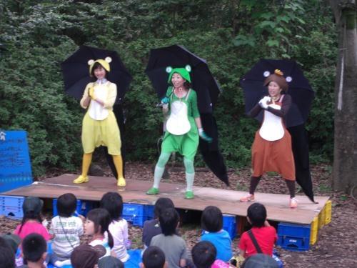 3匹の森カエル