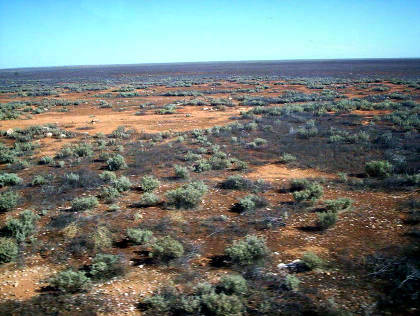 nullabor_plain_from_the_indian_pacific1.jpg