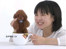 Nagatanien-ARAI0705