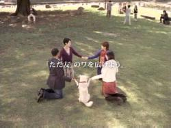 Softbank-WA0704.jpg