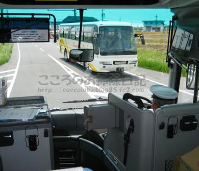 bus-2011