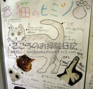 shinbunribu4-2011