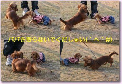 kissD_12_02_01.jpg