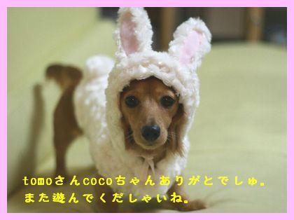 kissD_3653.jpg