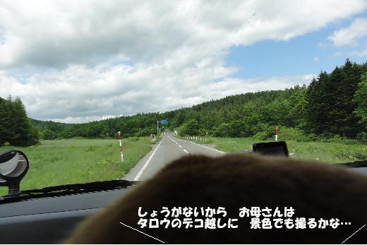 10デコIN景色