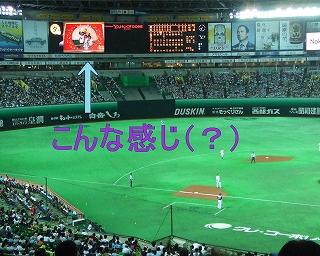 s-2011_0826.jpg