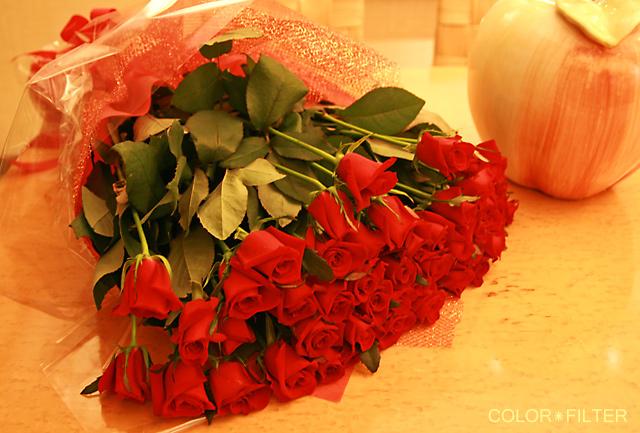 49本のバラ