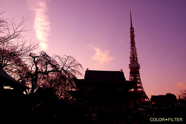 夕暮れの増上寺と東京タワー