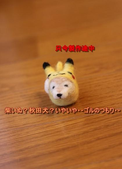 IMG_6644_R.jpg